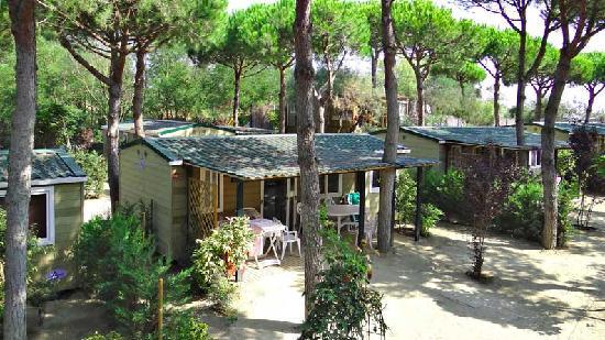 Lido degli Scacchi, Italy: Tintoretto Home