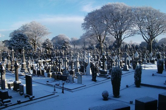 Cimetière de Glasnevin : Cemtery in the Snow