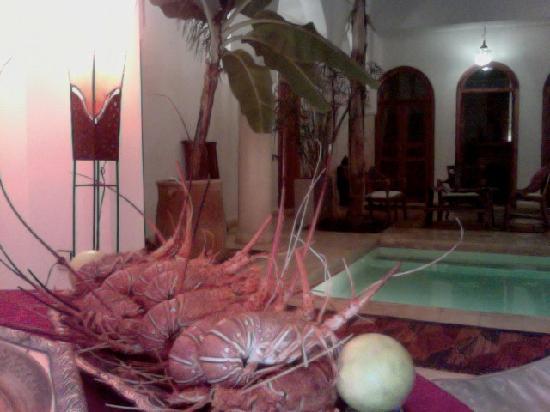 Riad Mariana : quelques langoustes