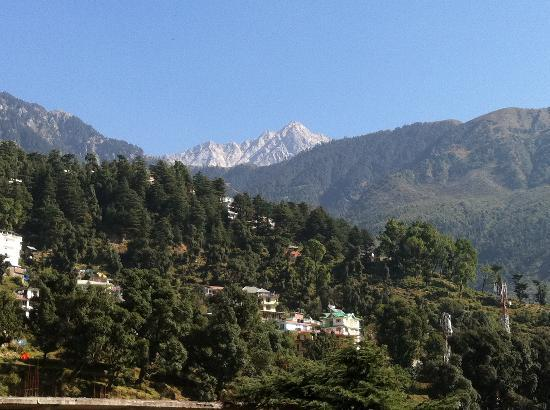 Sidharth House: Views from the terrace