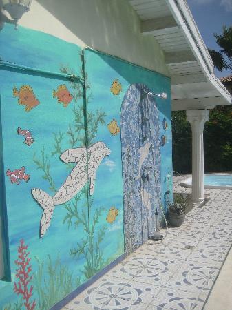 Villa Sunflower: Pool side