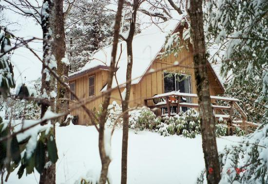 Alpen Acres Motel: The Chalet--Winter