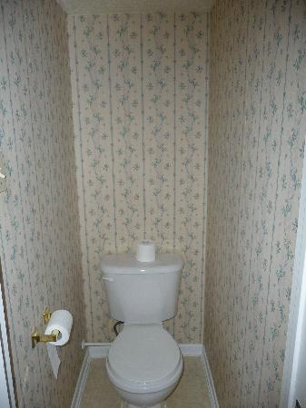 Albert House Inn: toilette