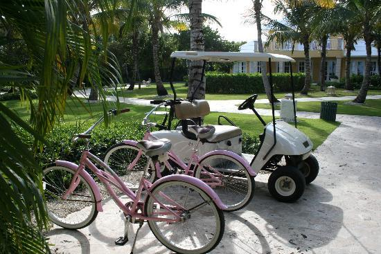 Tortuga Bay Hotel Puntacana Resort & Club: Your private transportation!