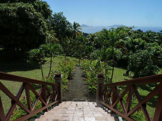 Le Jardin Malanga: Garden