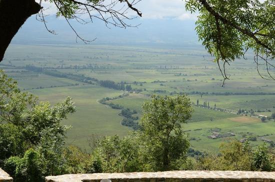 Монастырский комплекс Некреси: View of the Alazani valley