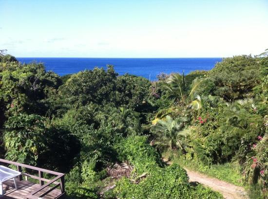 Northside Valley: A view from the villa, Lucienda.