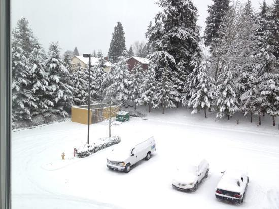 Holiday Inn Express & Suites Seattle North - Lynnwood : View from my hotel room