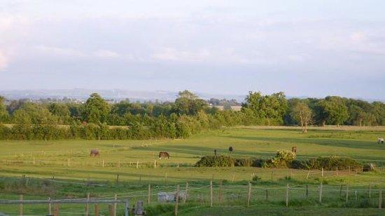 Church Farm: view with horses