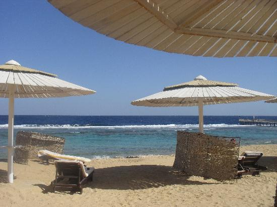 SuneoClub Reef Marsa: The hotel's beach on the way to the Red Sea