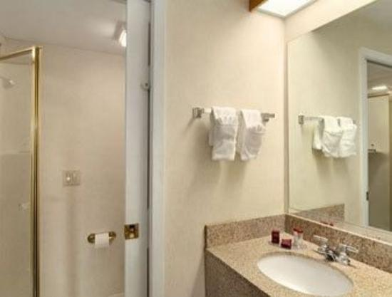 Ramada Marietta/Atlanta North: Bathroom