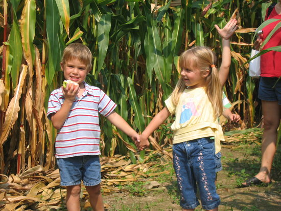 Paulus Orchards: Enjoy our Corn Maze on Fall Weekends
