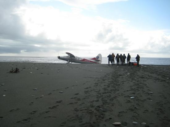 Fly in only makes Icy Bay Lodge a truly wild Alaskan experience