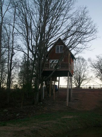 Monroe, Carolina del Norte: Treehouse