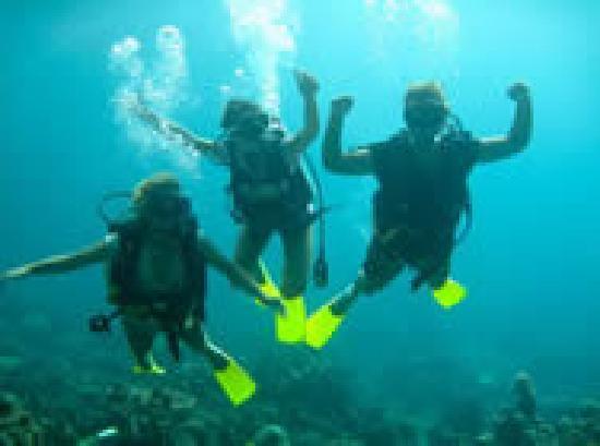 Fieldskills Adventures - Day Tours: Diving