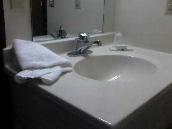 Seneca Lodge : da sink...oh...where the shampoo??