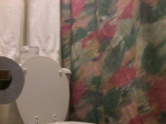 Seneca Lodge: ugly shower curtain