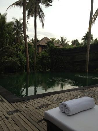 Komaneka at Rasa Sayang: View across the pool