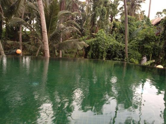 Komaneka at Rasa Sayang: View from the pool