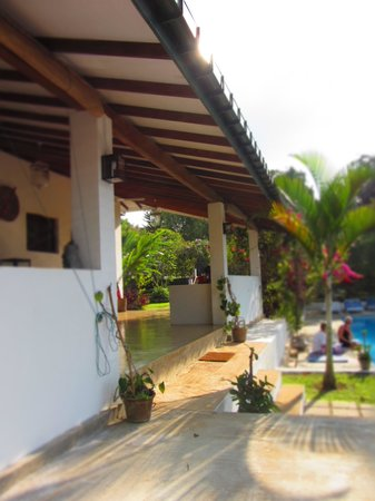 Ellerton Bungalow: View from poolside