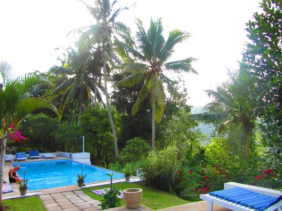 Ellerton Bungalow: View - pool
