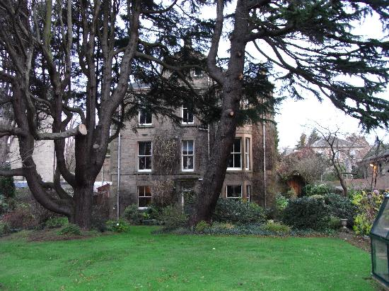 4 Morningside Place: I think that Cedar is 2nd floor right. Whatever, its a great place to stay.