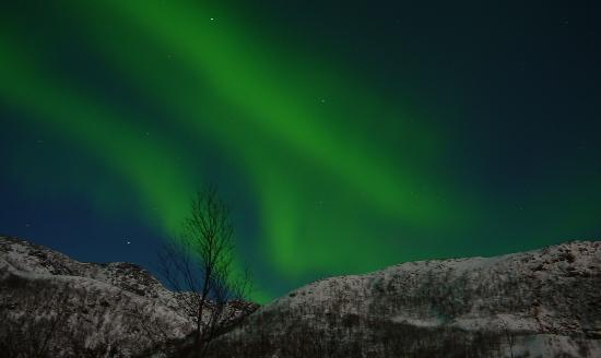 Radisson Blu Hotel, Tromso: The Northern Lights