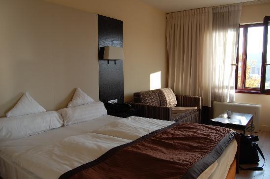 Lion's Garden Hotel: Hotel room