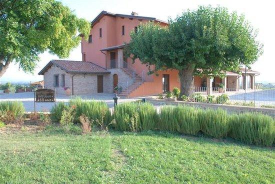 Tenuta Del Perugino: giardino