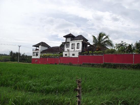 Balam Bali Villa: Balam Bali