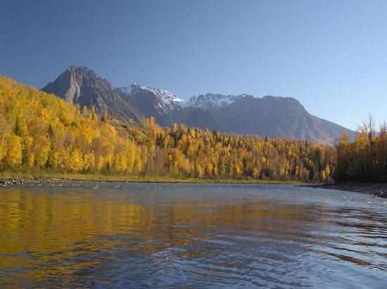 Skeena Wilderness Fishing Charters