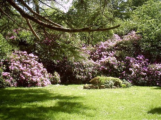 Ballyglass Country House: Our Gardens