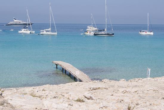 Playa de Ses Illetes: Vista desde Ses Illetes