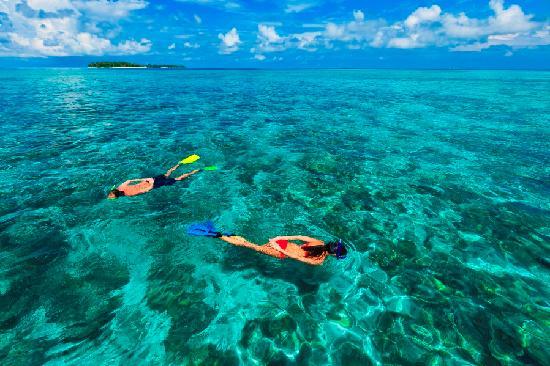 Kurumba Maldives: Snorkeling Safari