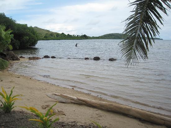 Bay of Plenty Lodge張圖片