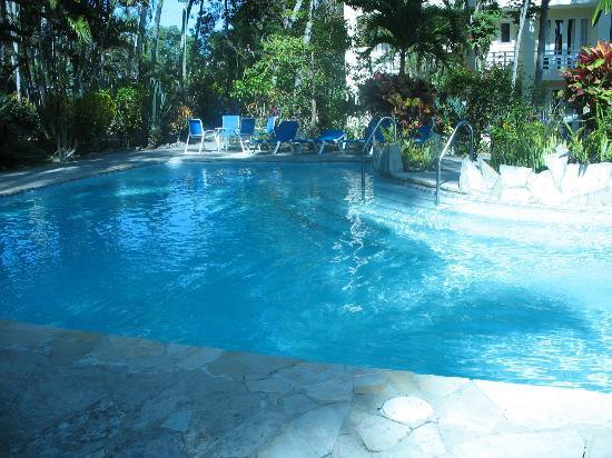 Albatros Condo Hotel : Albatros' pool