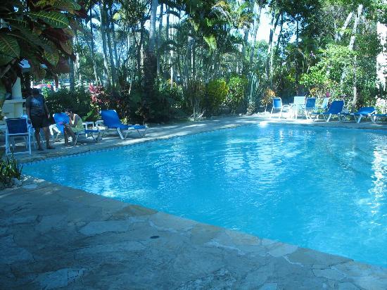 Albatros Condo Hotel : Vue de la piscine