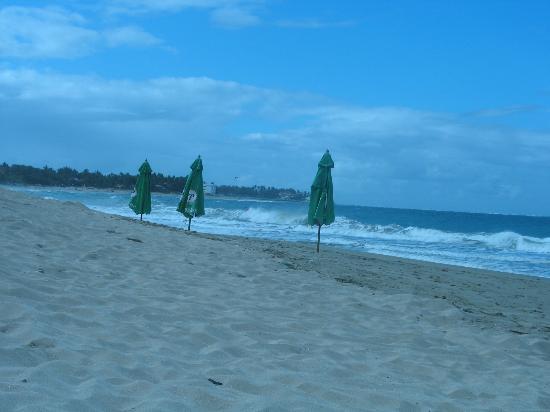 Albatros Condo Hotel : Beach
