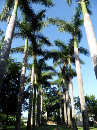 Hacienda Xcanatun: acceso principal