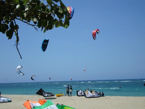 Albatros Condo Hotel: Kite surfing