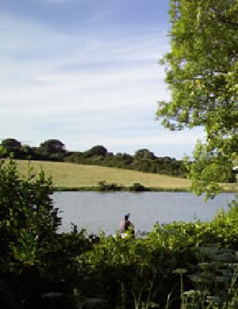 Tyddyn Sargent Coarse Fishery: Tyddyn Sargent Lake