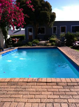 Marula Lodge Guesthouse: Jump in the pool and relax, read a book and enjoy!