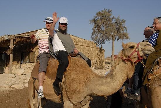 Shalom Israel Day Tours : Shalom Israel Camel Rides!