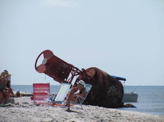 Half Shell Oyster House: Beach Bum!