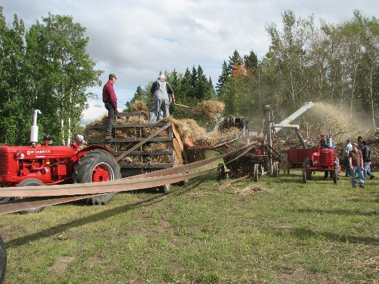 La Crete Mennonite Heritage Village: Threshing on Pioneer Day 2010