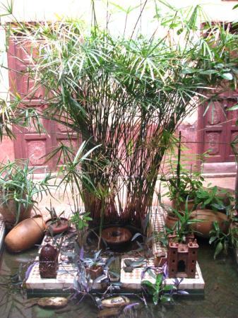 Riad les Inseparables: la fontaine et ses petits animaux