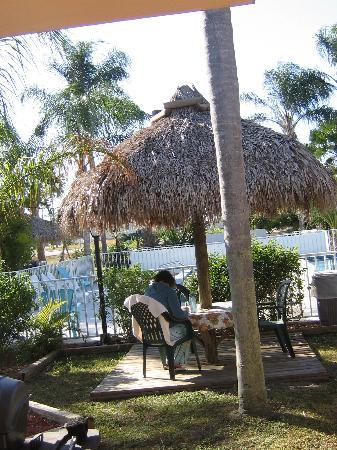 "Warm Mineral Springs Motel: writing in our ""front yard."""