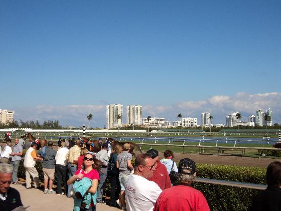 Gulfstream Park: sogar die Aussicht ist schoen