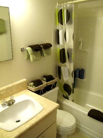 Yellowknife Polar Suite Guest Room: clean washroom