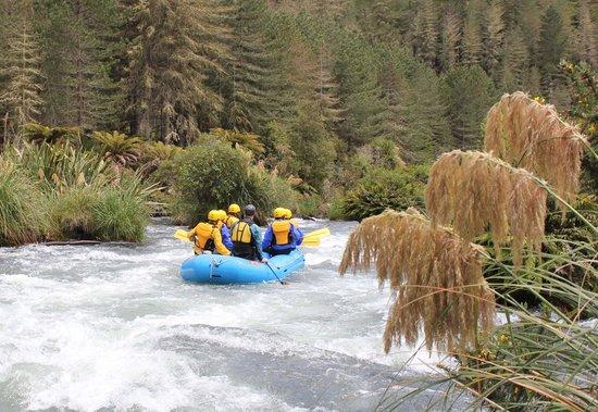 Foris Eco-Tours: Great scenery